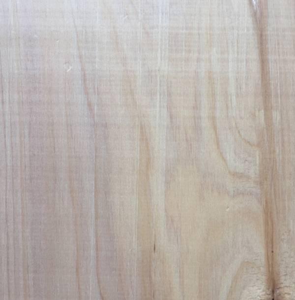 SA Cypress Close Up