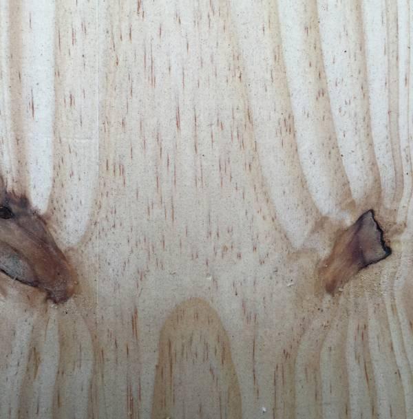 SA Pine Close Up